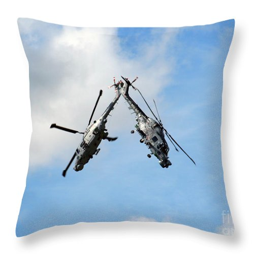 Black Cats Throw Pillow featuring the photograph Black Cats by Angel Ciesniarska