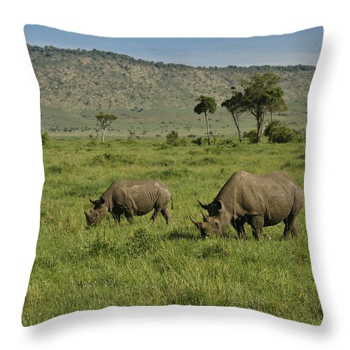 Africa Throw Pillow featuring the photograph Black Rhinos by Michele Burgess
