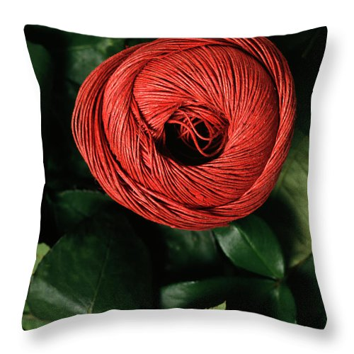 Arty Throw Pillow featuring the photograph Blossom by Stefania Levi