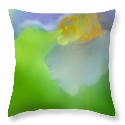 Blue Poppies Throw Pillow featuring the photograph Blue Poppy 4 by Jill Greenaway