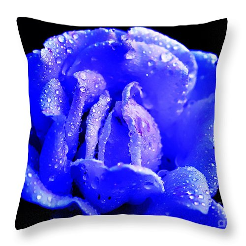Clay Throw Pillow featuring the photograph Blue Rose by Clayton Bruster