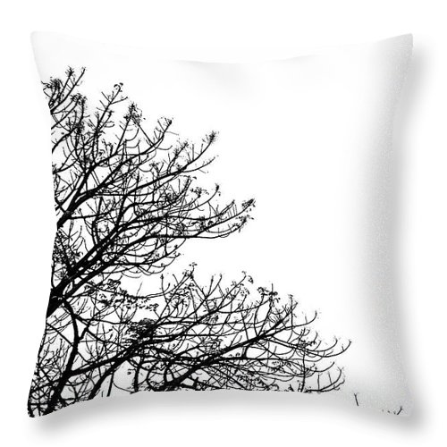 Tree Throw Pillow featuring the photograph Branches by Charuhas Images