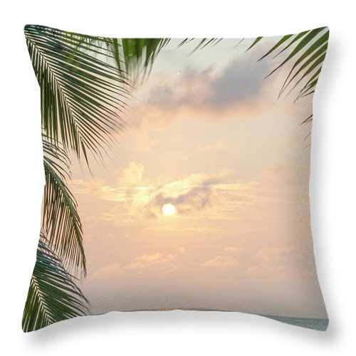 Caribbean Throw Pillow featuring the photograph Caribbean Sunrise Palms Background by Tim Hester