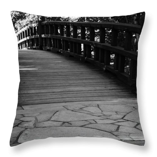 Throw Pillow featuring the photograph Carry On by Jamie Lynn