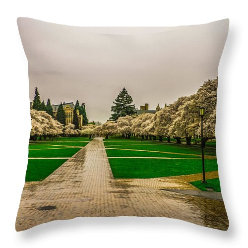 Cherry Trees Throw Pillow featuring the photograph Cherry Blossoms by Jerry Cahill