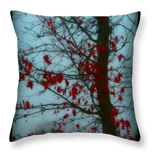 Tree Winter Nature Throw Pillow featuring the photograph Cold Day In Winter by Linda Sannuti