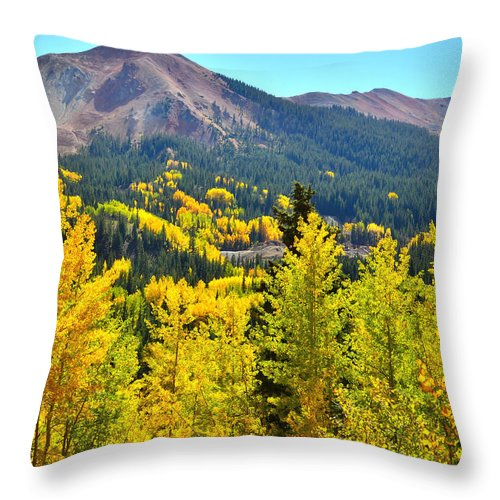 Colorado Throw Pillow featuring the photograph Colorado Fall Colors by Ray Mathis