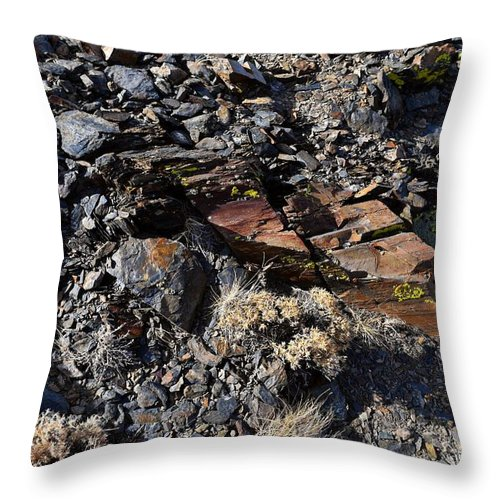 Alpine Throw Pillow featuring the photograph Colorful Lichens Growing On Rocks Along Monument Ridge, In The Eastern Sierra Nevadas by Will Sylwester