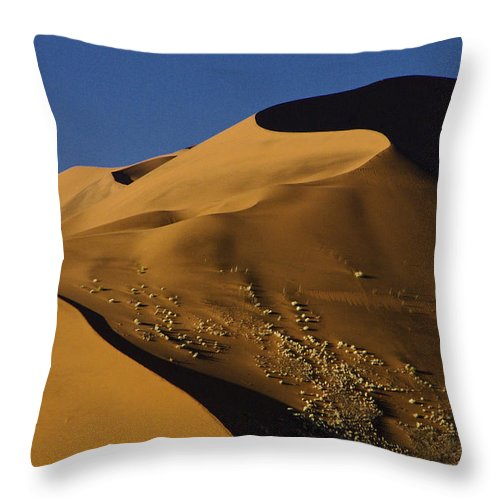 Africa Throw Pillow featuring the photograph Contours Of Sossusvlei by Michele Burgess