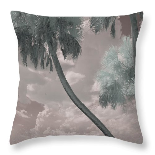 Trees Throw Pillow featuring the photograph Conversations by Gary Bartoloni