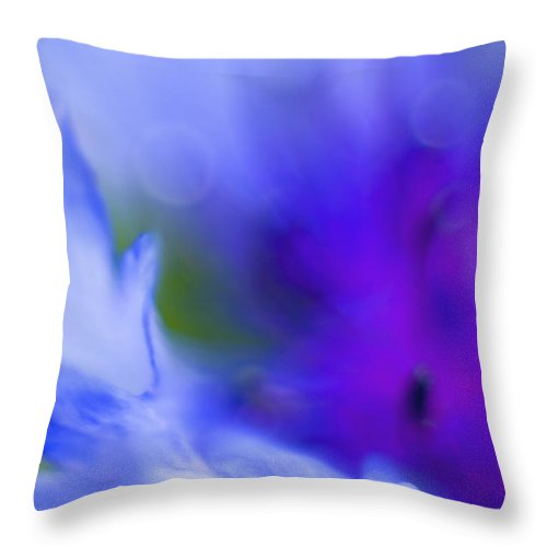 Cornflower Throw Pillow featuring the photograph Cornflower by Silke Magino