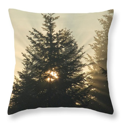 Nature Throw Pillow featuring the photograph Dawn by Daniel Csoka