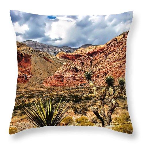 Desert Throw Pillow featuring the photograph Desert Cactus by Bob Welch
