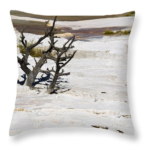 Yellowstone Throw Pillow featuring the photograph Desolate by Chad Davis