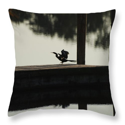 Reflections Throw Pillow featuring the photograph Dock Bird by Rob Hans