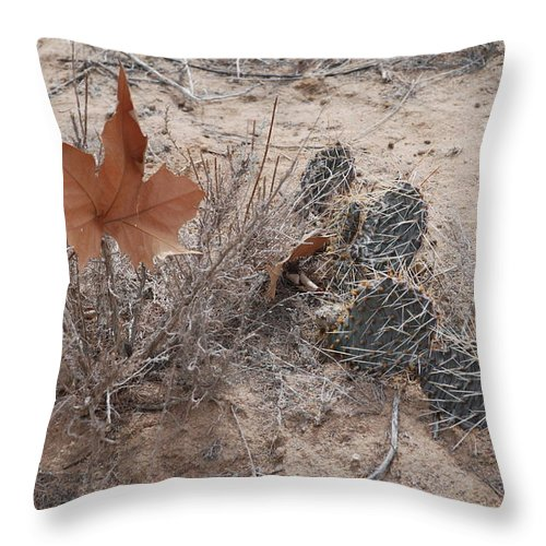 Desert Throw Pillow featuring the photograph East Meets West by Rob Hans