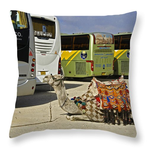 Humor Throw Pillow featuring the photograph Egyptian Parking Lot by Michele Burgess