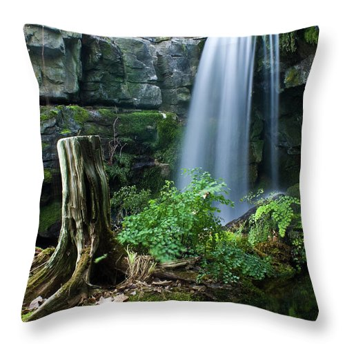 Fairy Throw Pillow featuring the photograph Enchanted Waterfall by Douglas Barnett