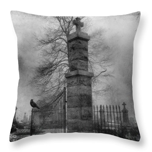 Gate Throw Pillow featuring the photograph Entrance by Gothicrow Images