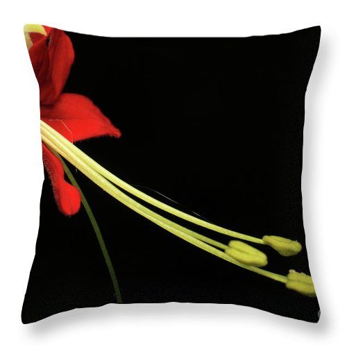 Exotic Flower Throw Pillow featuring the photograph Exotic Flower by Onie Dimaano
