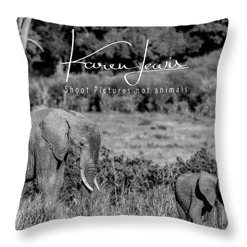 Elephant Throw Pillow featuring the photograph Family by Karen Lewis