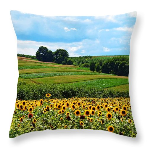 Sunflowers Throw Pillow featuring the photograph Field Of Flowers by Joseph Caban