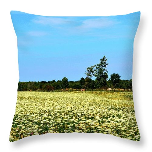 Field Throw Pillow featuring the photograph Field Of Queen Anne's Lace by Lyle Crump