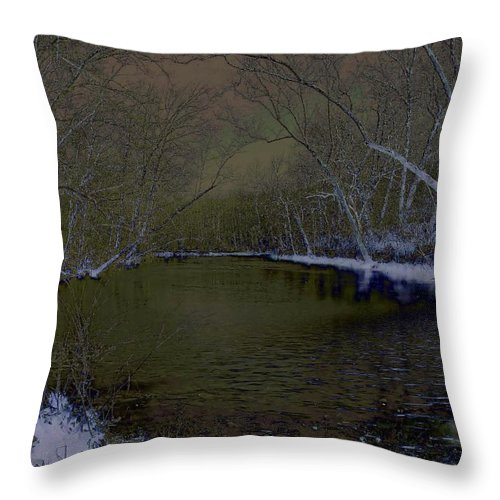 Snow Throw Pillow featuring the photograph First Snow by Julie Grace
