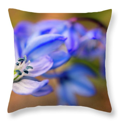 Spring Flowers Throw Pillow featuring the photograph First Spring Flowers by Lilia D