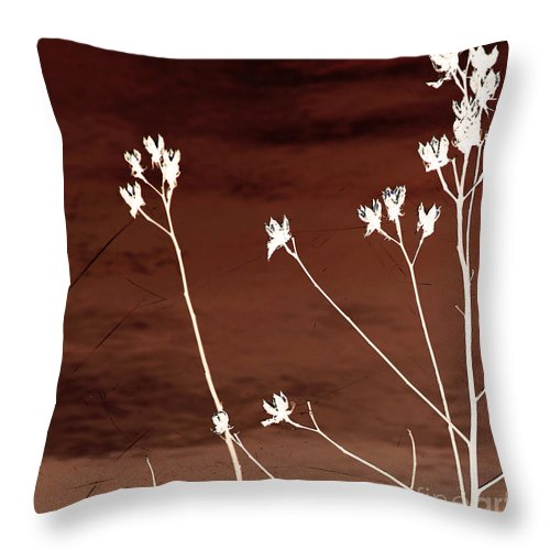 Flowers Throw Pillow featuring the photograph Floral by Amanda Barcon