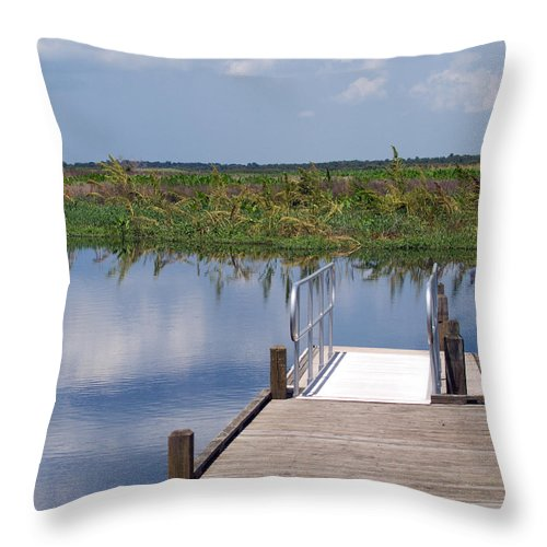 Florida; River; St; Johns; Saint; John; Flow; Flows; North; South Direction; Flowing; Current; Backw Throw Pillow featuring the photograph Florida Backwater by Allan Hughes