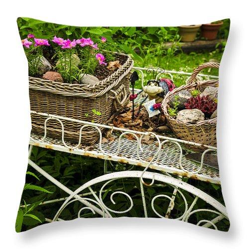 Garden Throw Pillow featuring the photograph Flower Cart In Garden by Elena Elisseeva