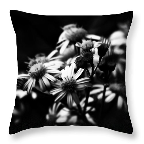 Beautiful Throw Pillow featuring the photograph #flowers #flower #tagsforlikes #petal by J Love