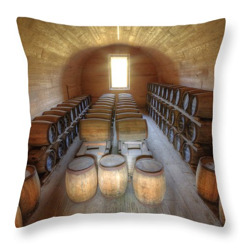 Fort Throw Pillow featuring the photograph Fort Moultrie Powder Magazine by Dustin K Ryan