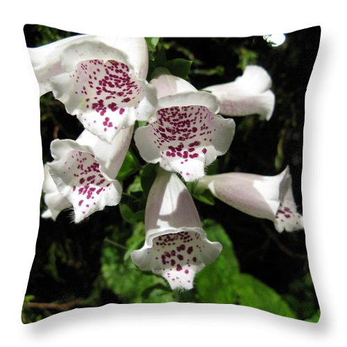 Foxglove Throw Pillow featuring the photograph Foxglove by Cindy Kellogg