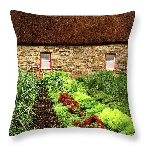 Farm Throw Pillow featuring the digital art Garden Farm by Vicki Lea Eggen