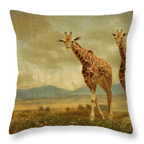 Giraffes Throw Pillow featuring the photograph Giraffes In The Meadow by Guy Crittenden