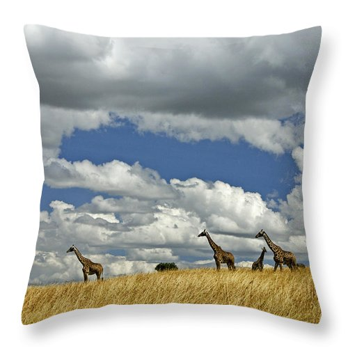Africa Throw Pillow featuring the photograph Giraffes On The Horizon by Michele Burgess