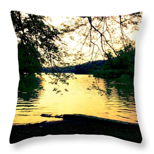 Landscape Throw Pillow featuring the photograph Golden Days by Kendall Eutemey