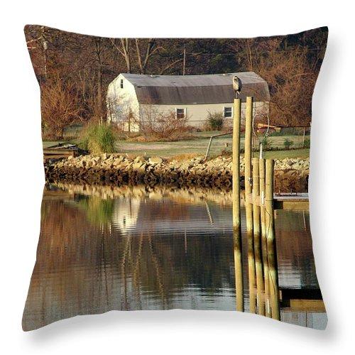 Great Blue Heron Throw Pillow featuring the photograph Great Blue Heron II by Brett Winn