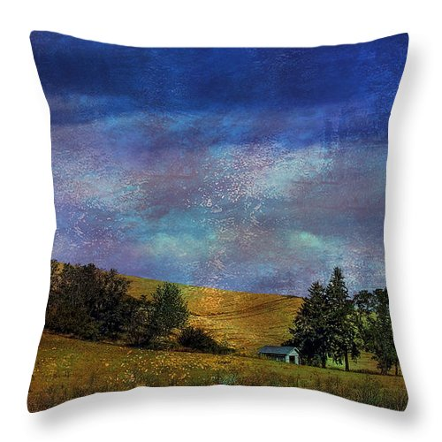 Wheat Throw Pillow featuring the photograph Harvested by David Patterson