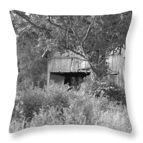 Country Throw Pillow featuring the photograph Hidden by Rhonda Barrett