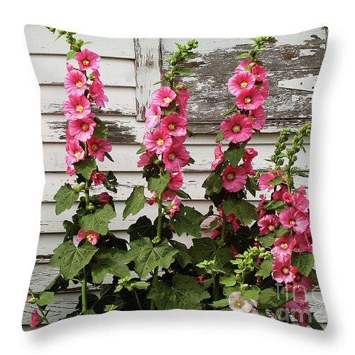 Hollyhocks Throw Pillow featuring the pyrography Hollyhocks by Bruce Morrison