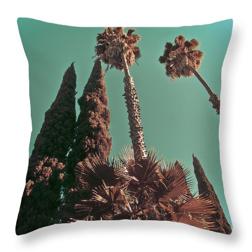 Hollywood Throw Pillow featuring the photograph Hollywood And Vine by Joanne Donnelly
