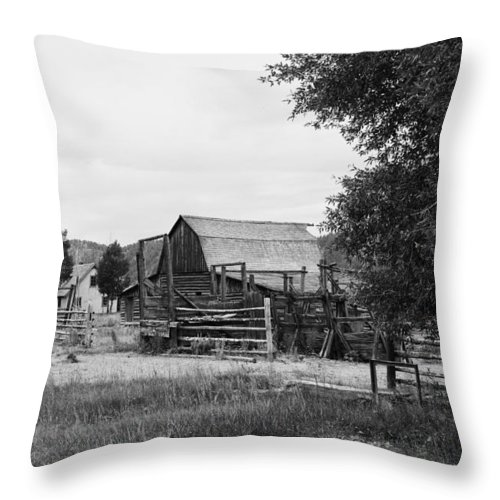 Jackson Throw Pillow featuring the photograph Homestead by Hugh Smith
