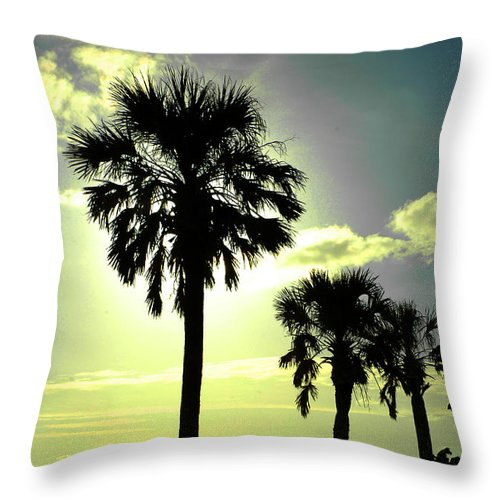 Photography Throw Pillow featuring the photograph Honeymoon Island Sunset by Susanne Van Hulst