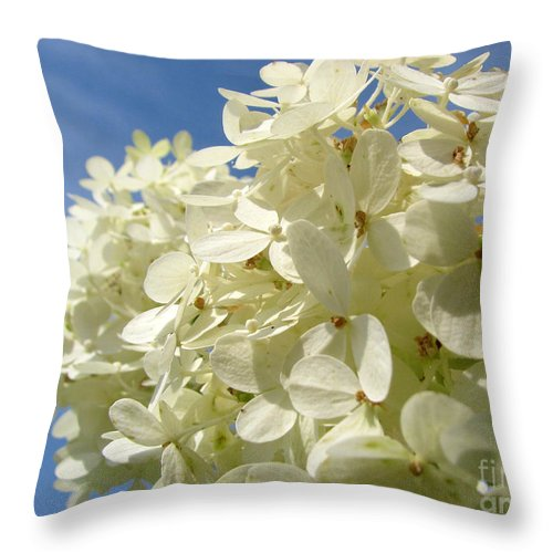 Hydranga Throw Pillow featuring the photograph Hydrangea by Amanda Barcon