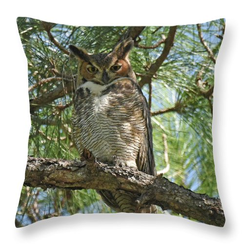 Great Horned Owl Throw Pillow featuring the photograph I See You by Sally Sperry