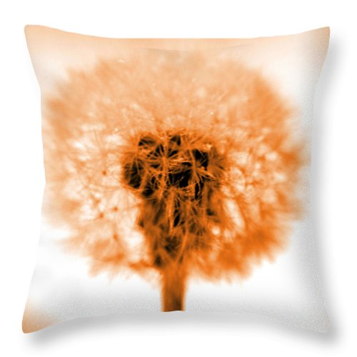 Dandelion Throw Pillow featuring the photograph I Wish In Orange by Valerie Fuqua