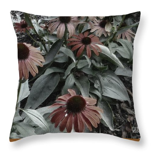 Photographic Art Throw Pillow featuring the photograph Hidden Treasure by Kathie Chicoine